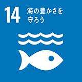 ゴール:14 海の豊かさを守ろう